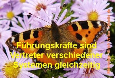 Coaching für Führungskräfte - 669056_web_R_by_Ulrich Velten_pixelio.de