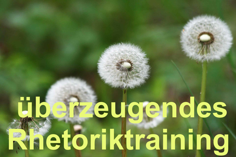 Im Rhetoriktraining zum Redner werden - Bild von Hans-Peter Wellke auf dem blog.wellke.de_überzeugendes Rhetoriktraining